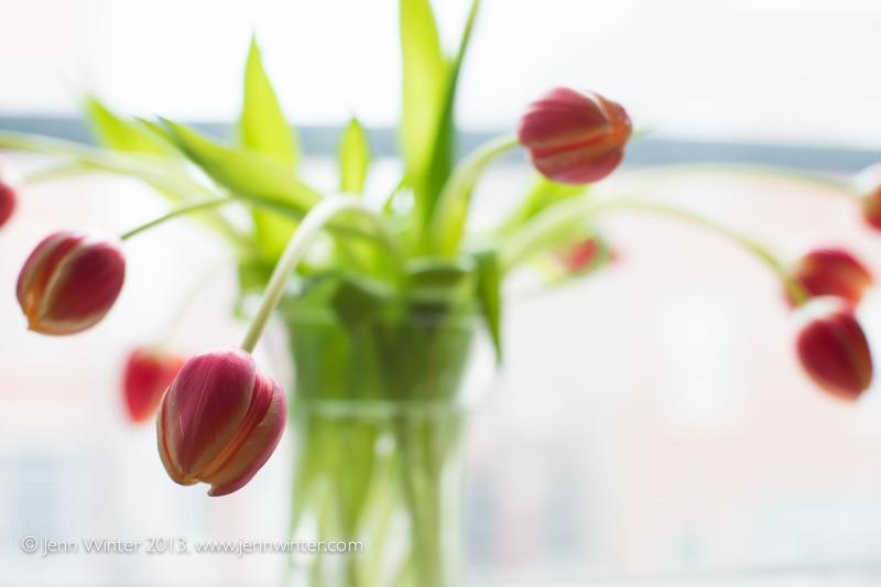 SpringFlowers-2